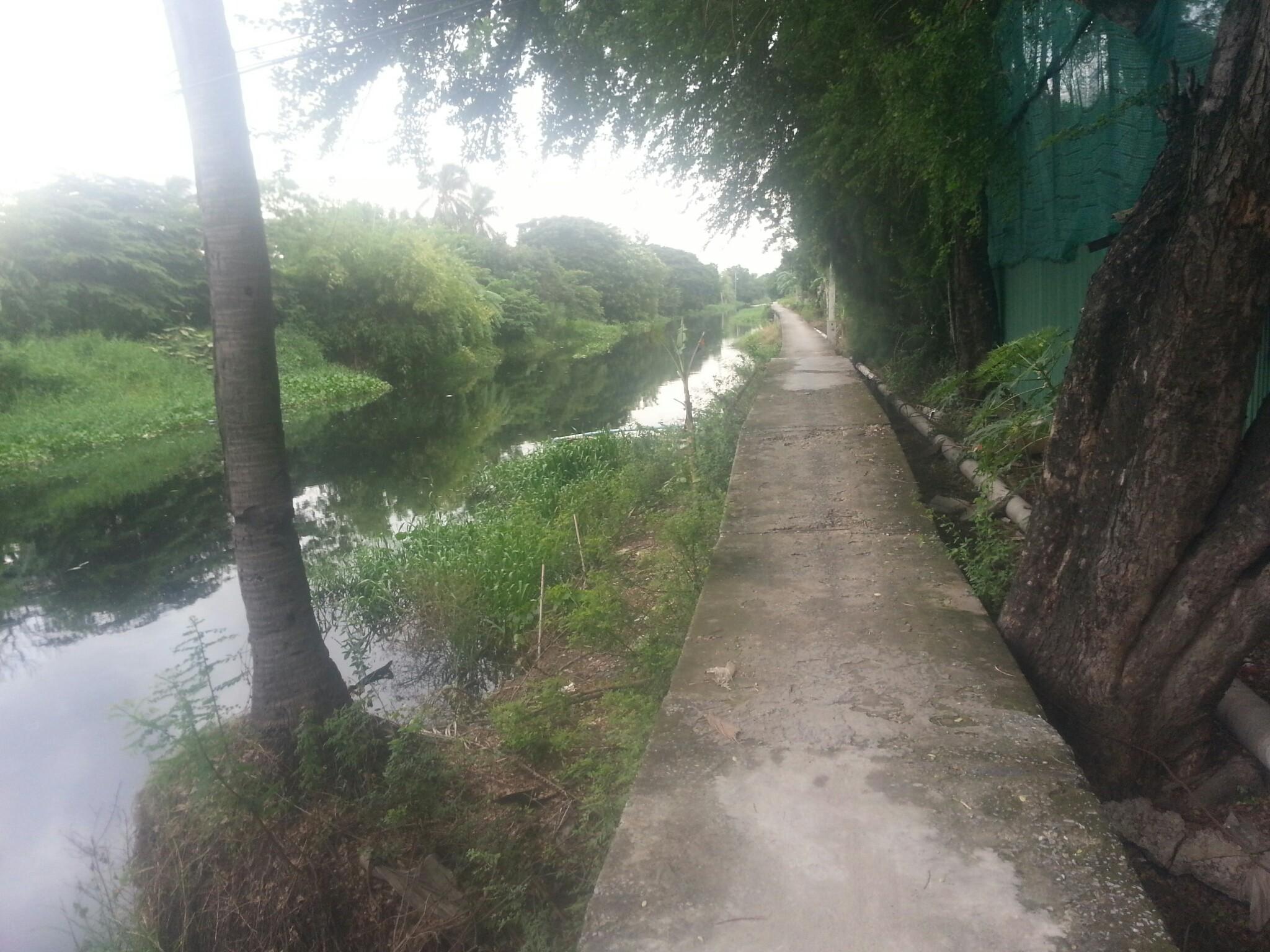Bangkok Khlong near Suvarnabhumi