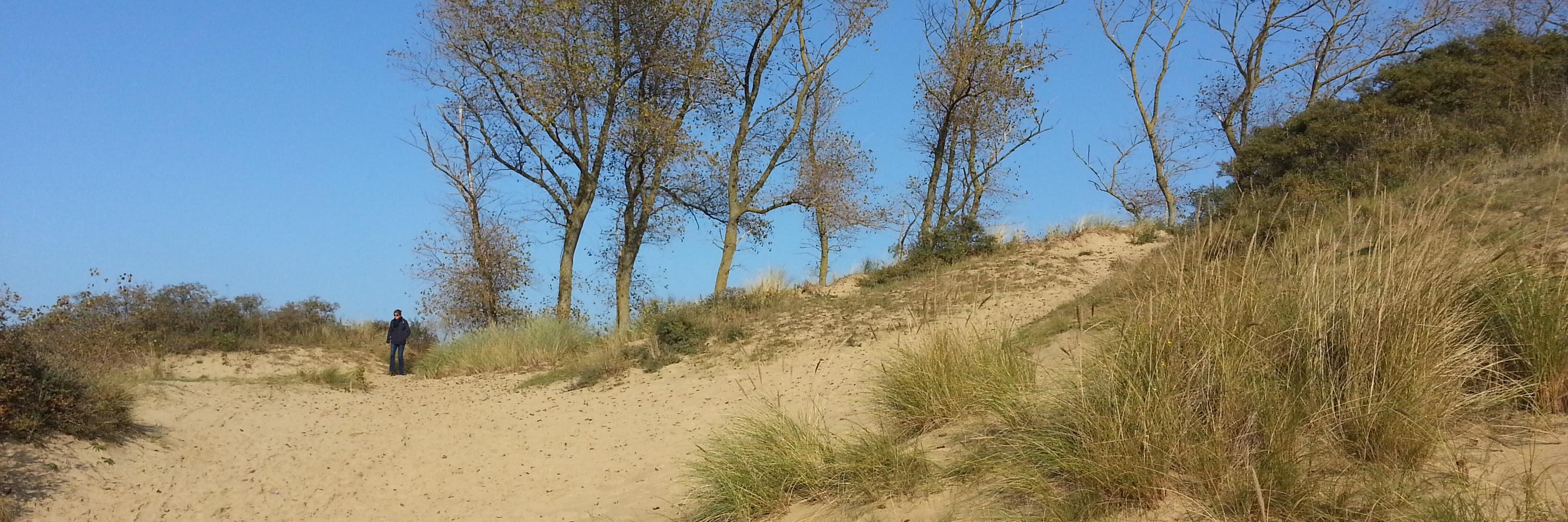 080-premiere-dune