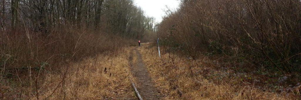 [CR] Trail du Cailloux - 19km de plaisir