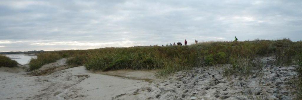 [CR] Bêtes de Somme - 65km avec la confrérie