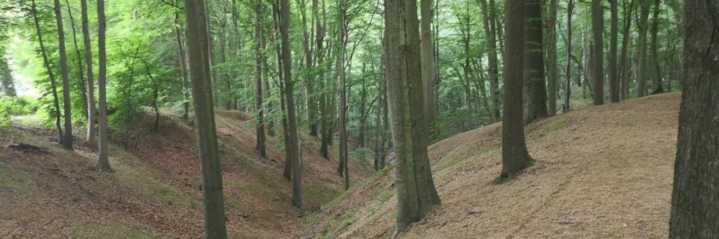 [CR] Randonnée Brussel Roubaix