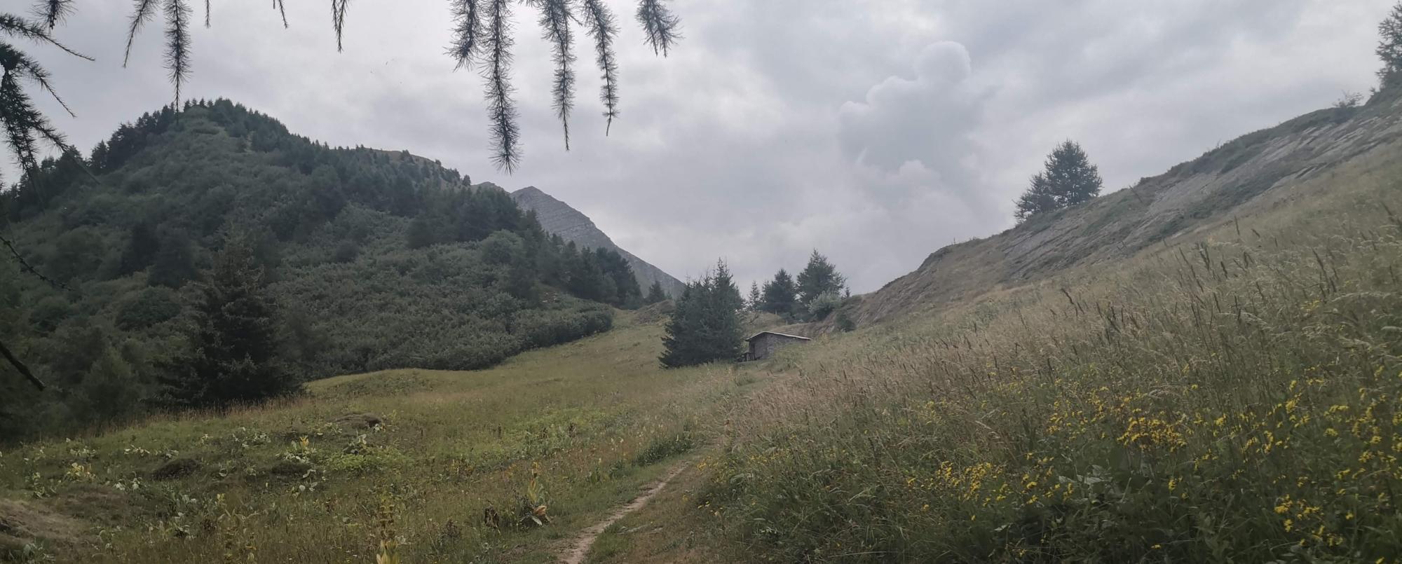 La cabane de chasseur