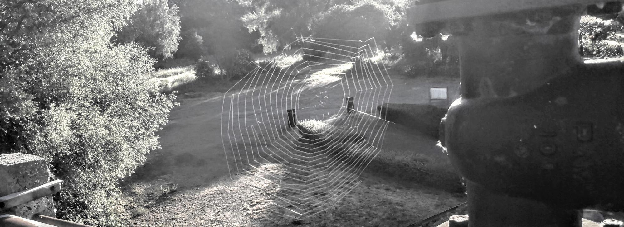 Toile d'araignée à Arques