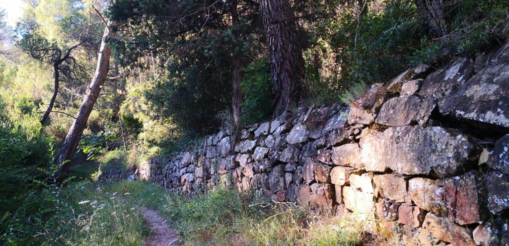 GR51 un joli mur de pierres sèches