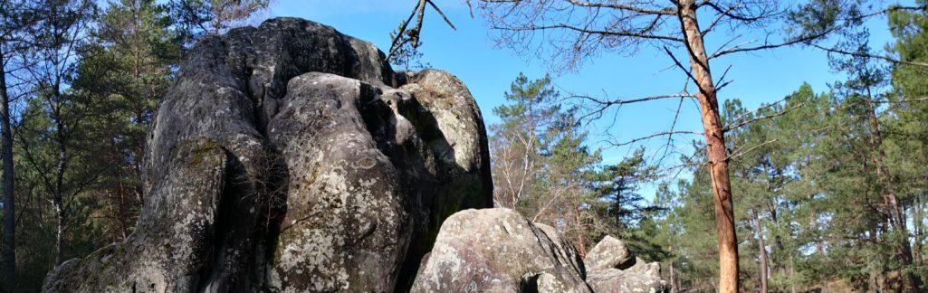 Rochers à Fontainebleau